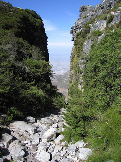 Table Mountain looking down to Cape Town